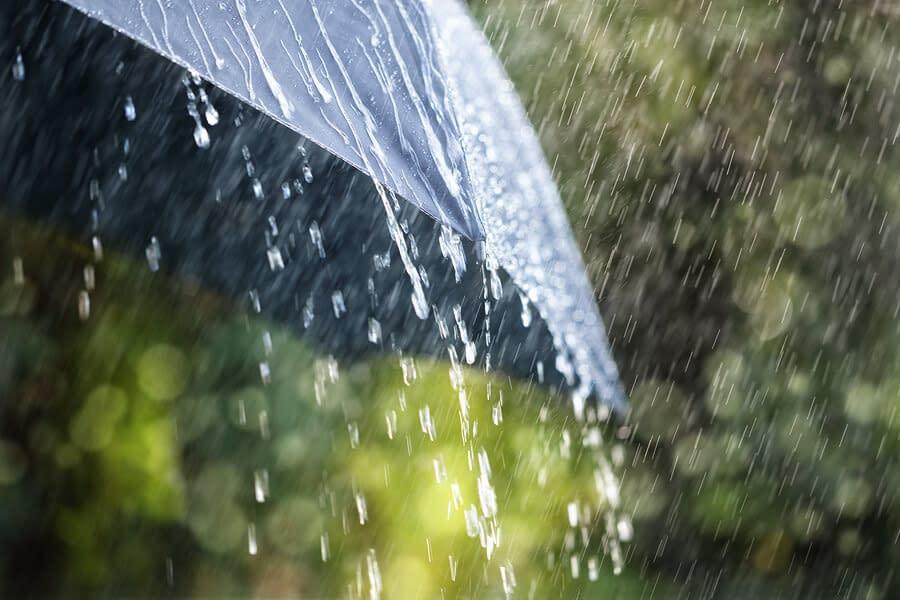 Bid by Weather