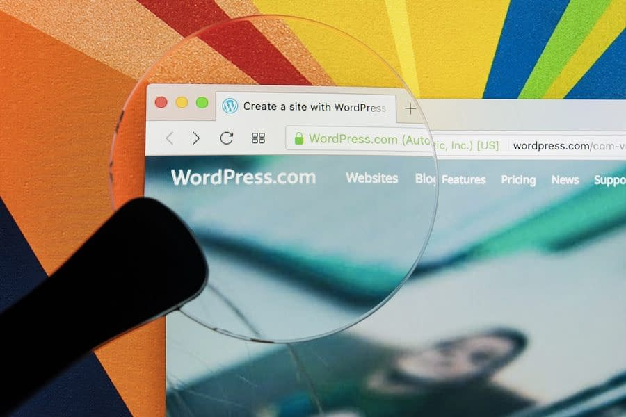 WordPress Theme Website vs. Custom-Coded Website- How to Choose the Right One